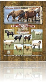 Open Box Rafter Ranch Sale Catalog 2013