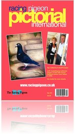 The Racing Pigeon Magazine  Subscription