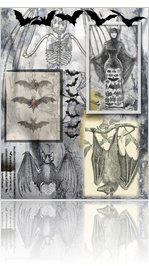 Bat Collage Digital Sheet by dogearedtown.com