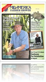 August 5, 2011 issue 31