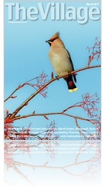 The Village magazine March 2017