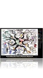 Pain & Pleasure Principle Mind Map