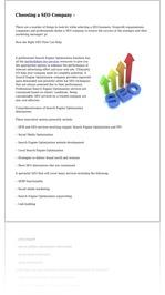 Choosing a SEO Company -