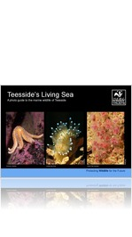 Tees Valley Living Seas
