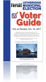 2017 Municipal Election Guide