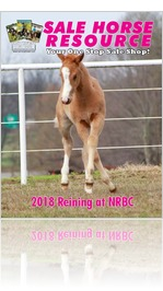 Sale Horse Resource 2018 Reining at NRBC Edition