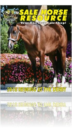 Sale Horse Resource - 2018 Reining at the Derby