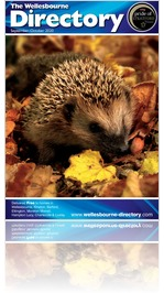 The Wellesbourne Directory September/October 2020