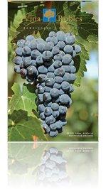 Vina Robles 2011 Fall Newsletter